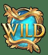 Medusa_Wild