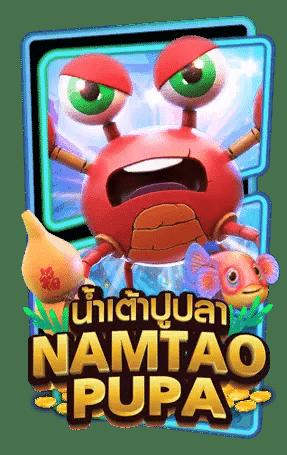 Namtao Pupa