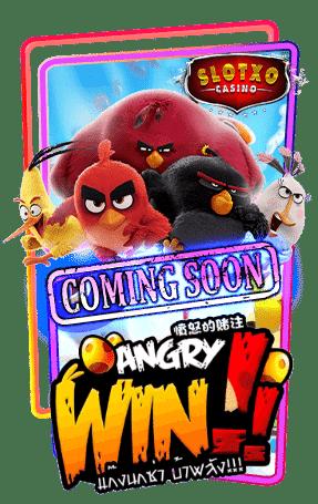 Angry Win