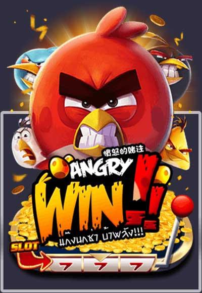 ANGRY-Win
